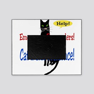 catalert01 Picture Frame