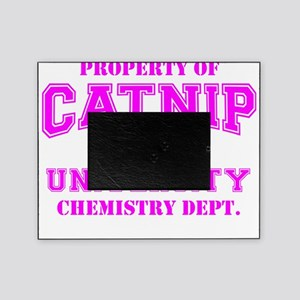 Property of Catnip University Chemis Picture Frame