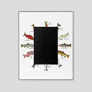 North American Salmon and Trouts Clocks Picture Fr