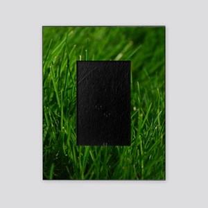 GREEN GRASS Picture Frame