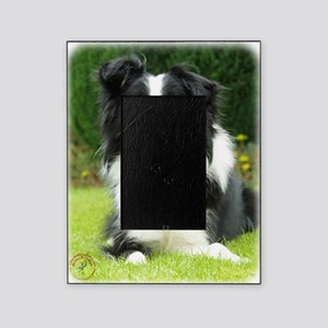 Border Collie 9A014D-14 Picture Frame