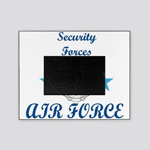 Sec. For. Air Force Picture Frame