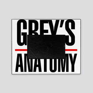 Greys Anatomy Picture Frame