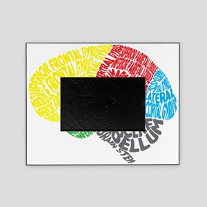 Your Brain (Anatomy) on Words Picture Frame