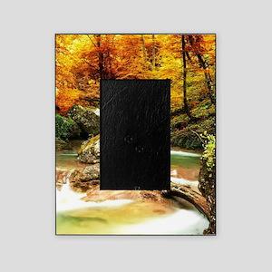 Autumn Stream Picture Frame