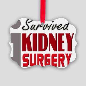 isurvived-kidney Picture Ornament