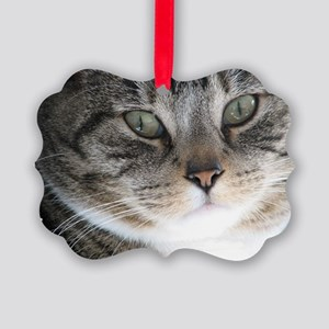 Cat Close-up Picture Ornament