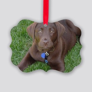 Chocolate Lab Grass Picture Ornament