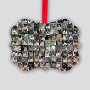 Cat Shelter Jessica's Cats Picture Ornament