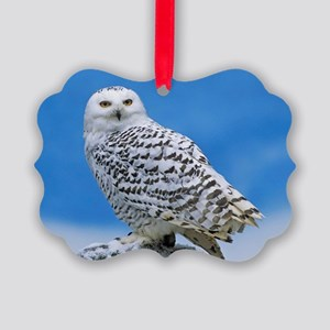 Snowy Owl Picture Ornament