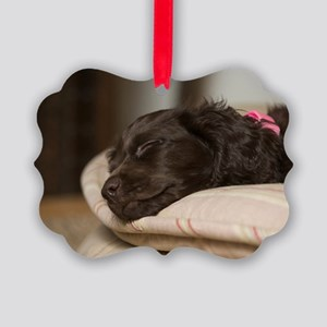 Pippi Sleeping Picture Ornament