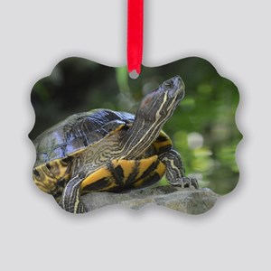 Turtle on a Rock Picture Ornament