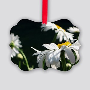 Daisy Dream Picture Ornament