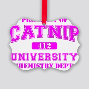 Property of Catnip University Che Picture Ornament
