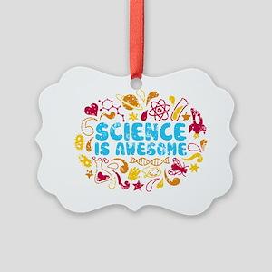 3-science Picture Ornament