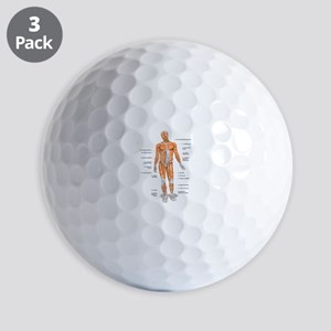 Muscles anatomy body Golf Ball