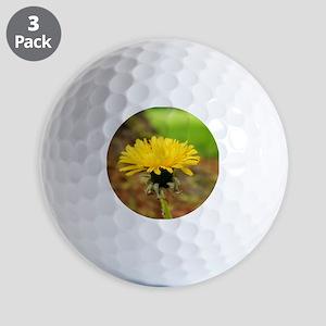 218230_225657577448627_160839957263723_ Golf Balls