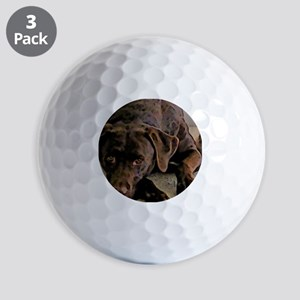 chocolate lab Golf Balls