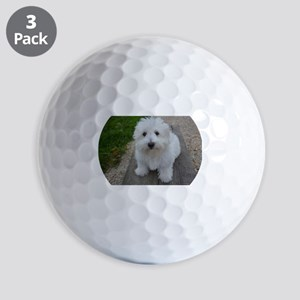 coton de tulear on bench Golf Ball