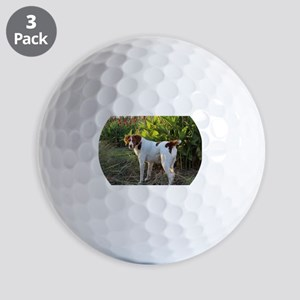 Tropical Pointing Brittany Golf Balls