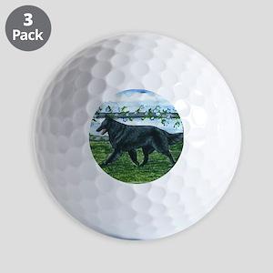 bel shep fence Golf Balls