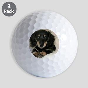 long hair black doxie 16x12 Golf Balls