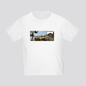 Pompeii, 3 photos Toddler T-Shirt