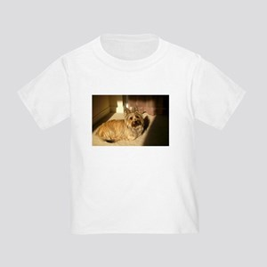cairn terrier laying T-Shirt