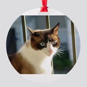 snowshoe 2 Ornament