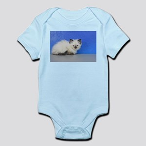 Anna - Seal Point Ragdoll Kitten Body Suit