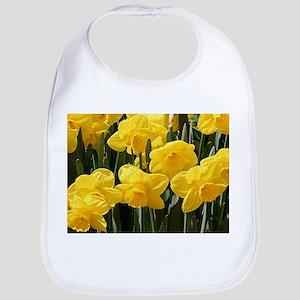 Daffodil flowers in bloom in garden Bib