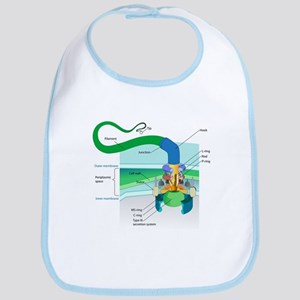 Cell Structure Baby Bibs - CafePress