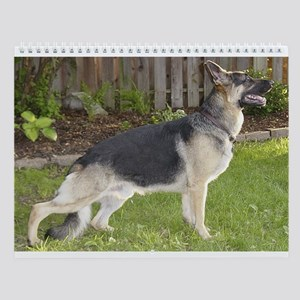 Franimals German Shepherd Wall Calendar