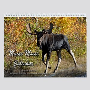 Maine moose 3 Wall Calendar