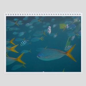 Fish Photo Wall Calendar