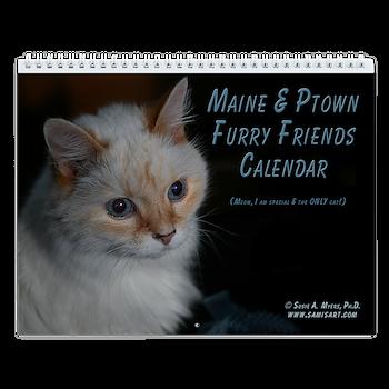 New England Dog & Cat Wall Calendar