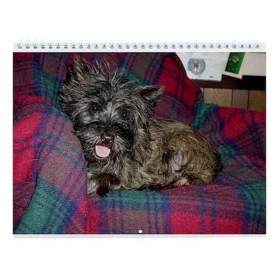 Baby Cairn Terrier Wall Calendar