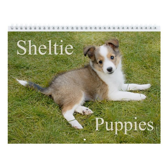 Shetland Sheepdog Sheltie Puppies Wall Calendar By Birchlake