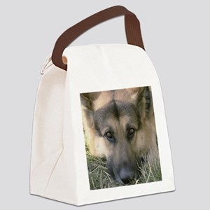gsd2 Canvas Lunch Bag