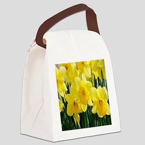 alaska 3 083 - Copy - Copy (3) co Canvas Lunch Bag