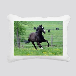 spring_walker_mini Rectangular Canvas Pillow