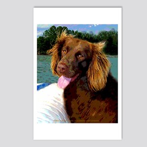 Boykin Spaniel on Board Postcards (Package of 8)