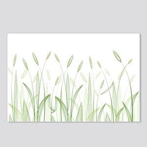 Delicate Grasses Postcards (Package of 8)
