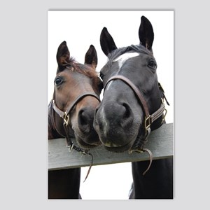 Kissing Horses Postcards (Package of 8)