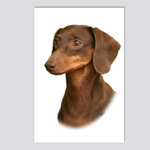Dachshund 9Y420D-379 Postcards (Package of 8)