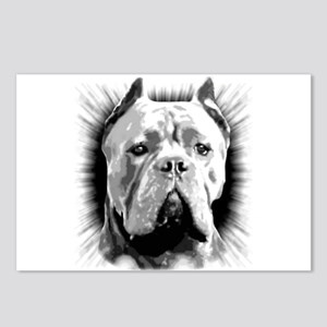 Cane Corso Dog Postcards (Package of 8)