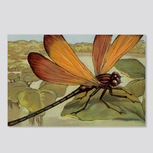Dragonfly Painting Postcards (Package of 8)