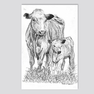 Cow & Calf  Postcards (Package of 8)