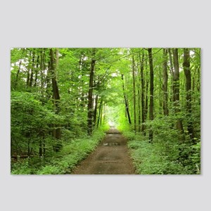 nature trail Postcards (Package of 8)
