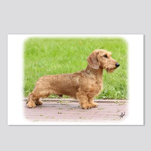 Dachshund 9Y426D-178 Postcards (Package of 8)